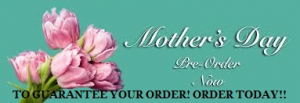 Mother's Day pre orders Flowers in Mount Pearl, NL | Flowers With Special Touch