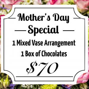 Mother's Day Special   in Mount Pearl, NL | MOUNT PEARL FLORIST
