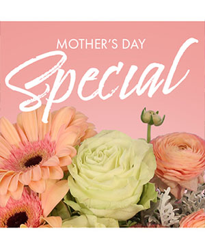 Mother's Day Special Designer's Choice in Farmer City, IL | The Garden House Flowers & Gifts