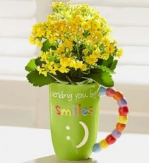 MUGABLE FULL OF BLOOMS