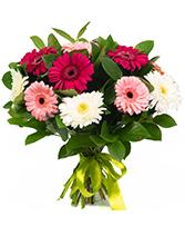 Maya Bouquet