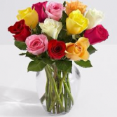 12 Multi-Color Roses Arrangement