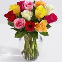 12 Multi-Color Roses Arrangement