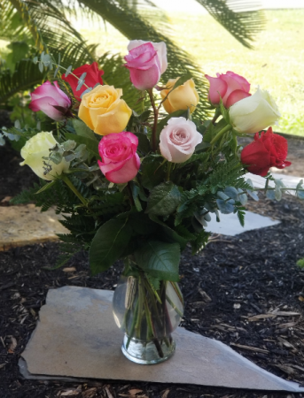 Multi-Color Roses Mixed Dozen