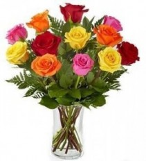 Multi colored Roses    spring special