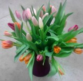 Multicolored tulips, MO-93 Fresh floral