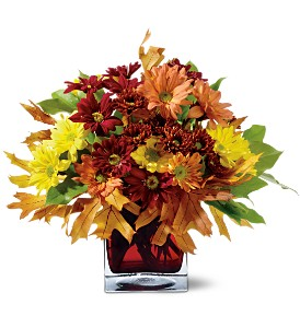 Mum Montage Fall Bouquet in Whitesboro, NY | KOWALSKI FLOWERS INC.