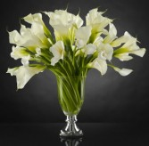 Musings Luxury Calla Lily Bouquet by Vera Wang