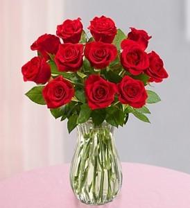 Elegant Roses  12,18,24 Roses