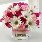 My Garden Bouquet  Shop Special