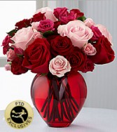 My Heart to Yours Roses