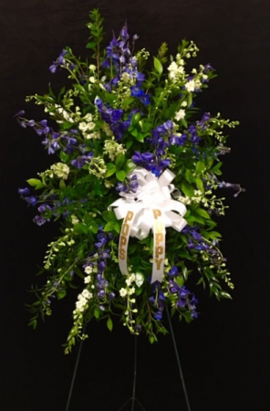 My Hero Blue and White Larkspur