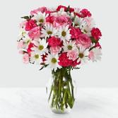 Pinkalicious spring