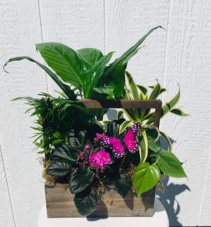 N  in Whittier, CA | Rosemantico Flowers