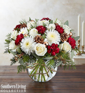 Natural Elegance™ by Southern Living™ holiday