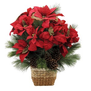 POINSETTIA with winter greens