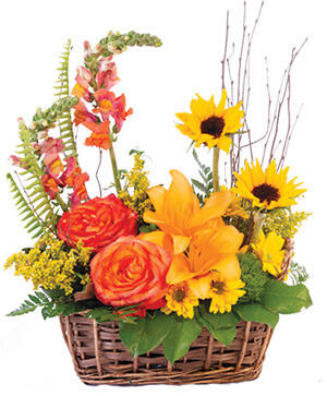 Natural Sunset Basket Arrangement in Sterling Heights, MI | FLOWERS AT DAISIE'S WEDDING DESIGNS