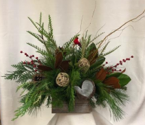 Natural Wonder Holiday Special