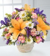 Natural Wonders™ Basket Arrangement