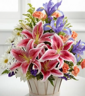 Nature in Bloom Basket arrangement