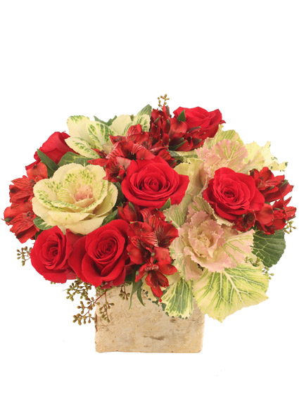 Nature\'s Noel Arrangement in Miami, FL - GERANIOS FLOWERS
