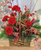 Natures Xmas Basket