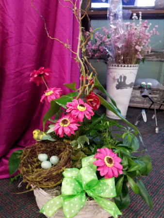Nest Basket Garden