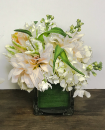 Neutral Spring Cube Arrangement