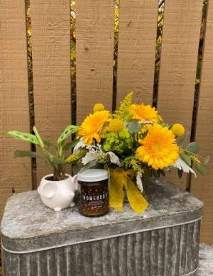 New Baby Bundle  in Iowa City, IA | Every Bloomin' Thing