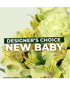 New Baby Flowers Designer's Choice in Hooker, OK | LINDA'S FLOWERS & GIFTS/ Downtown Hooker