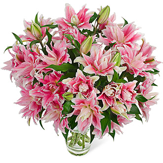 NEW FRAGRANCE  ROSELILY BOUQUET  NO POLLEN
