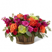 New Sunrise Basket - 5229 Flower Arrangement
