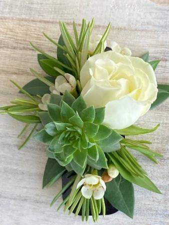 No Pin Rose & Succulent Boutonniere