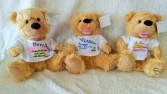 Noah Prayer Bears Plush Animals
