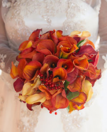 Nosegay Bridal Bouquet Wedding Flowers