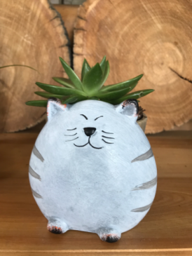 NOVELTY CONTAINER S AND PLANTS Cat Plant