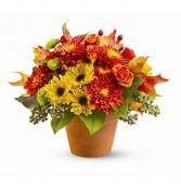 November Flowers Arrangement