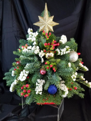 O Christmas Tree, O Christmas Tree  in Clearwater, FL | FLOWERAMA