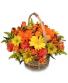Harvest colorful basket Fall Baskrt