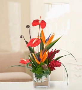 Ocean Bliss Flower Arrangement in Burbank, CA | MY BELLA FLOWER