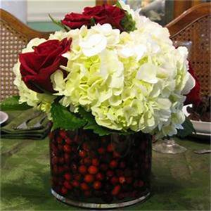 Oh!! Cranberry Our BEST seller for the Holidays! in Crossville, TN | Poppies Florist