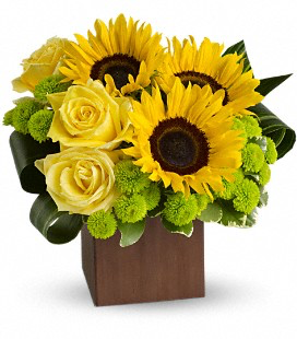 Oh Sunny Day Cube arrangement container may vary