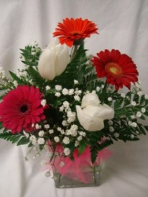 GERBERA MIXED COLORED DAISIES  AND WHITE TULIPS ARRANGED IN A CUBE VASE WITH BABY'S BREATH!!