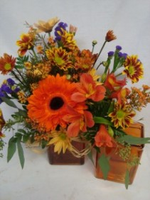 FALL Bright  flowers arranged  in  colored vase! Seasonal Flowers!!