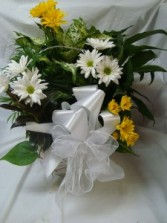 Large mixture of different plants in a basket with cut flowers and bow. Nice keepsake!