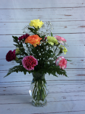 One Dozen Assorted Color Carnations