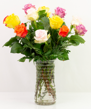 One Dozen Assorted Roses - SPECIAL PRICE