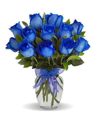 One Dozen Blue Velvet Roses