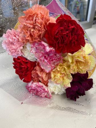 One Dozen Carnations Extra Fancy Plain  One Dozen Carnations Solid Colors Or Mixed Upon Availability  Extra Fancy Long Stems ((Pick UP Only))
