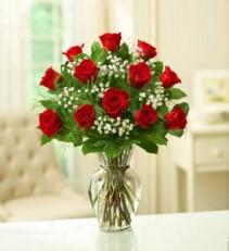 One Dozen Classic Roses One Dozen Roses